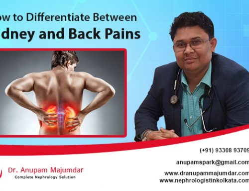 Nephrologist Helps You Differentiate Between Kidney and Back Pains